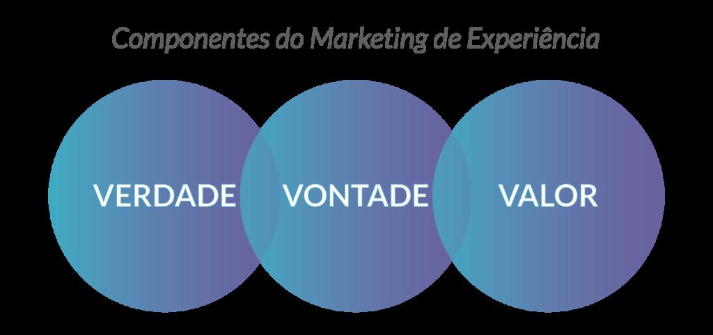 Componentes do Marketing de Experiência Educacional - Rubeus