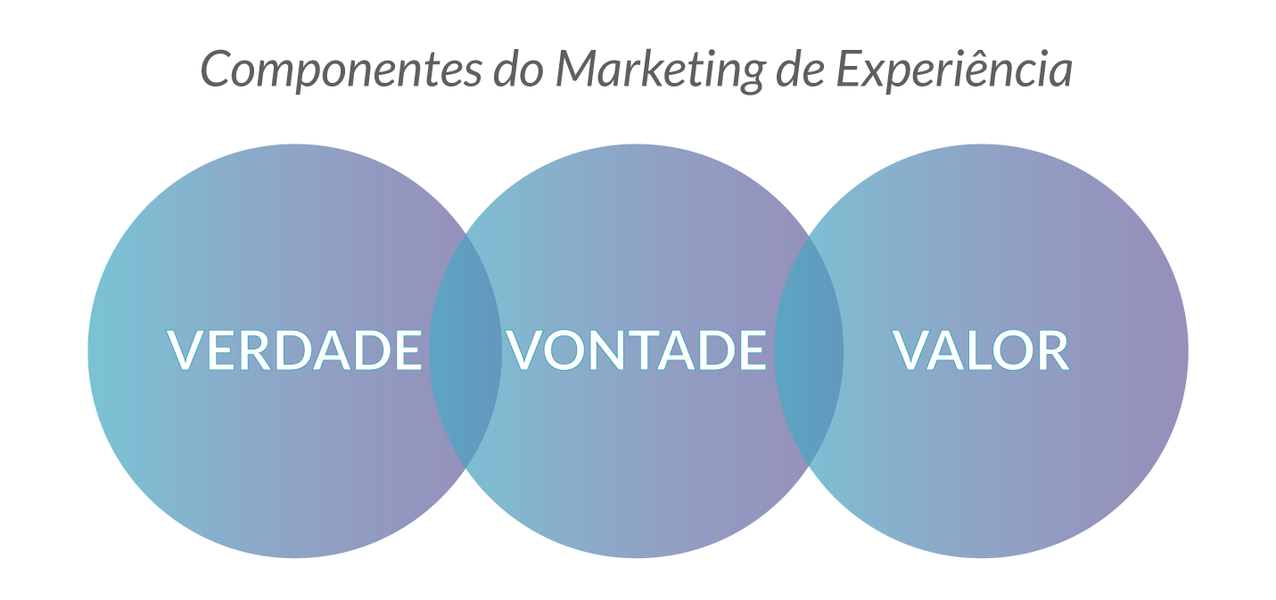 Componentes do Marketing de Experiência Educacional - Rubeus