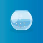 6 iscas digitais para instituições de ensino: saiba como gerar mais leads