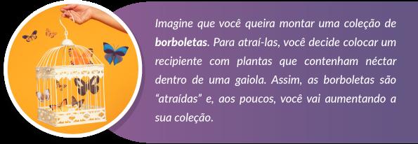 Storytelling - coleção de borboletas - Rubeus